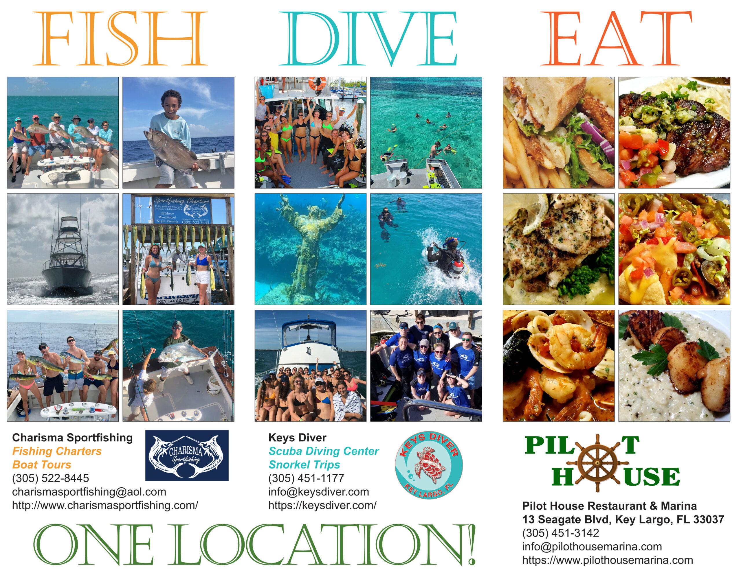 Fish-Dive-Eat